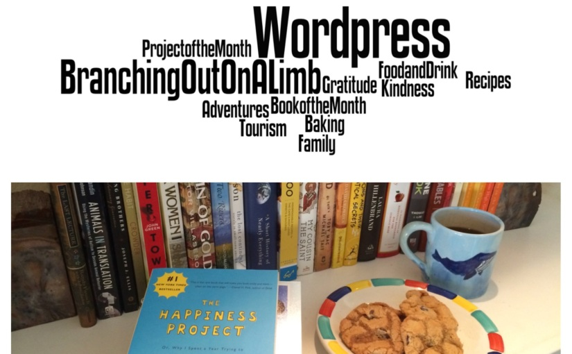January Book and Project WrapUp