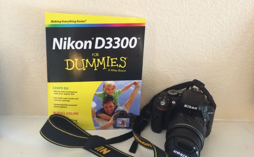 "February Read: ""Nikon D3300 for Dummies"""