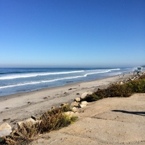 Torrey Pines State Preserve... a nice place to run. Nice and FLAT.