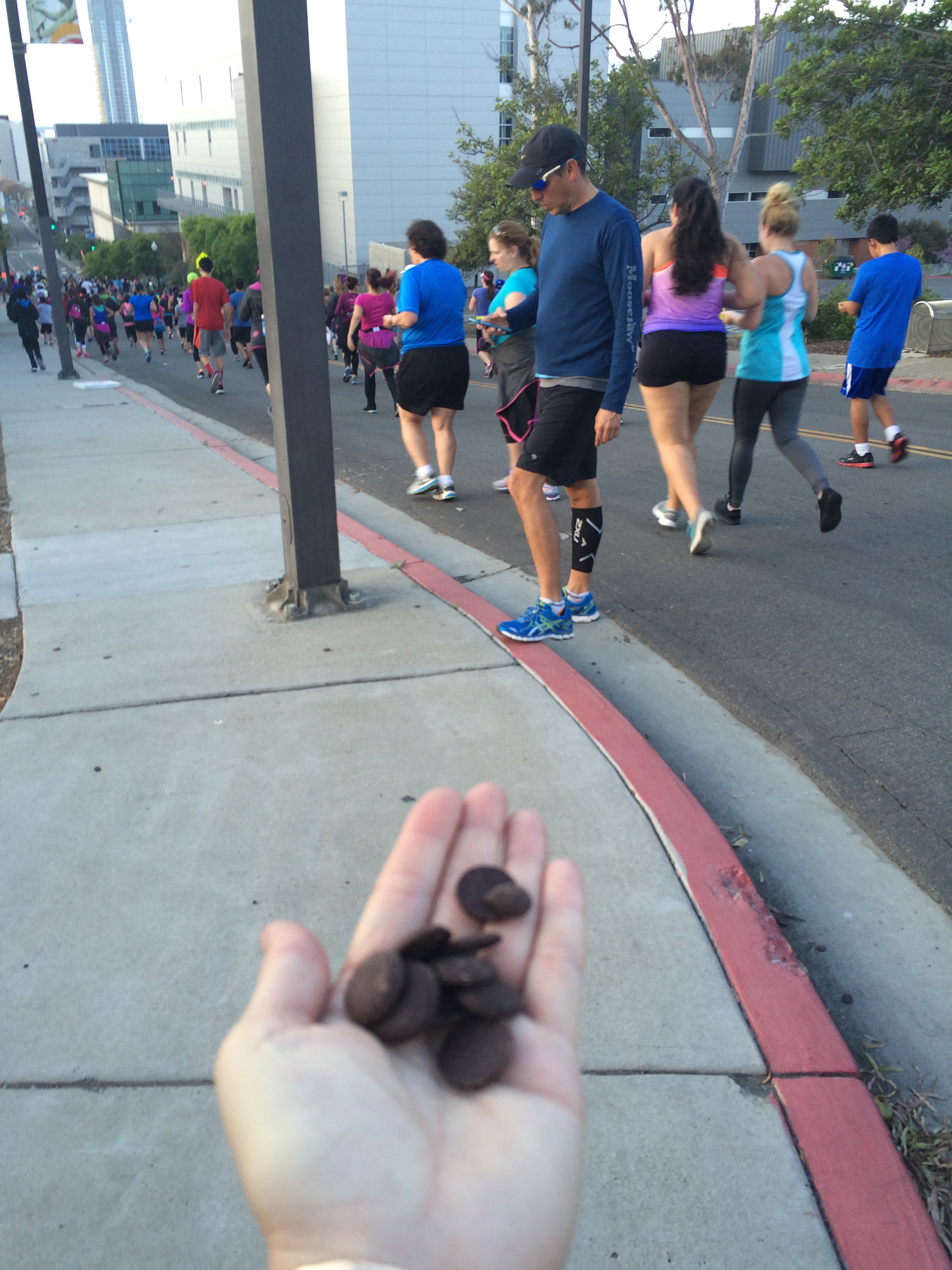Hot Chocolate 5K – branching out… on a limb