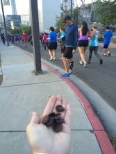 Why wouldn't you learn to run if at your first 5K they hand out chocolate at the halfway mark?!?