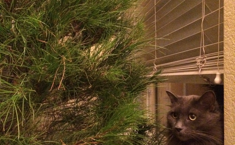 Dat Tree -or- If Mamma Ain't Happy…